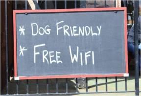 Dog friendly wifi